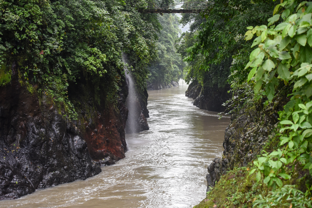 Pacuare-River-White-Water-Rafting-14-1000x666