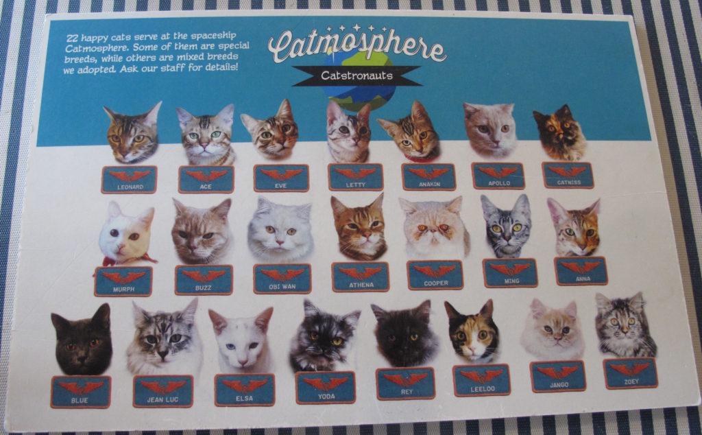 40_cat_cafe_menu