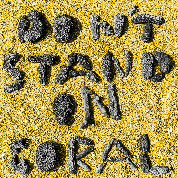 Dont_Stand_On_Coral_MrMrsBackpacker